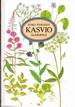 Koko perheen kasvio - Eliasson Yngve - Eliasson Margareta - Dahlström Kristina tuotekuva