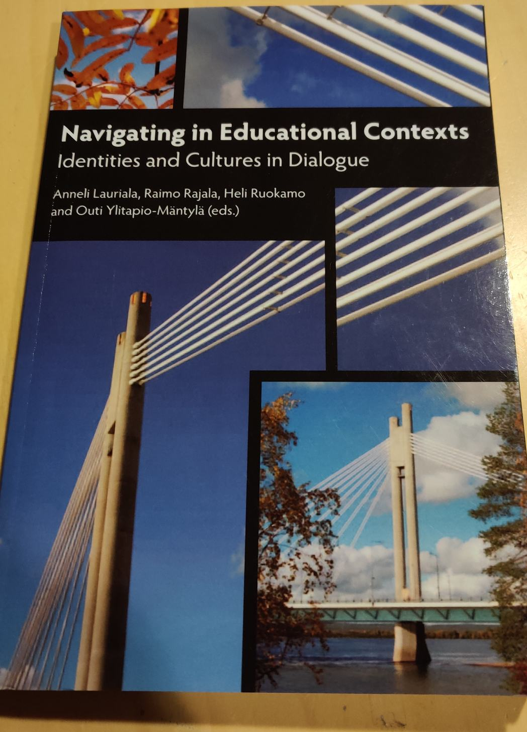 Navigating in educational contexts - Lauriala Anneli tuotekuva